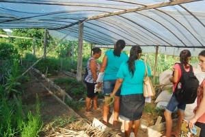 A agricultora Maria Margarida mostrou aos educadores as práticas agroecológicas que desenvolve em seu sítio. Foto: Divulgação/ICV