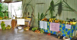 Mesa preparada por alunos e educadores da Escola Municipal do Campo Aldovandro da Rocha Silva. Foto: Carina Sernaglia/ICV