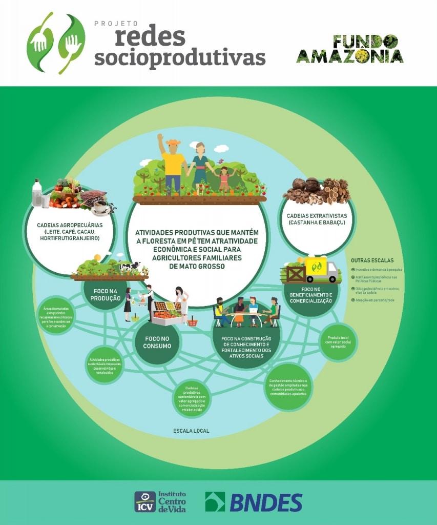 Gráfico ilustrativo sobre o projeto Redes Socioprodutivas do Fundo Amazônia em parceria com o ICV