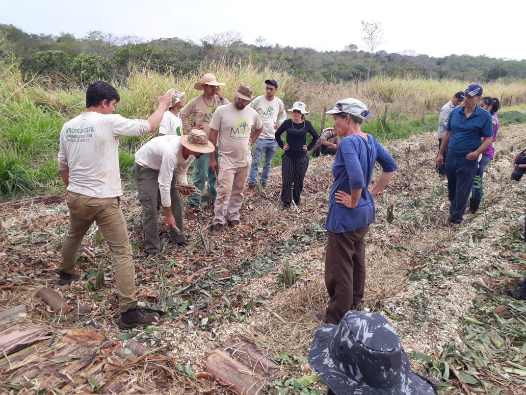 Foto mostra grupo de pessoas ouvindo instrutor sobre como plantar agrofloresta, no chão há linhas prontas para plantio e cobertas de folhas e matéria orgânica