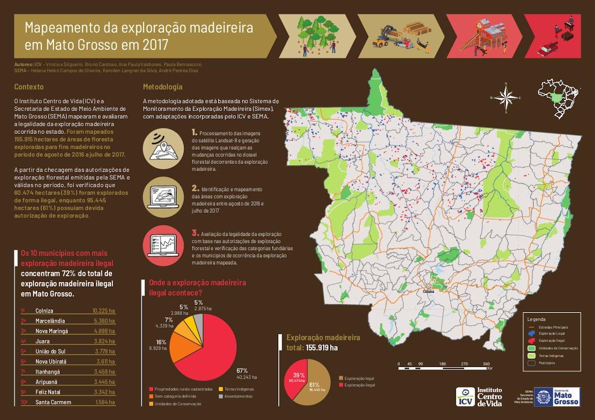 infográfico da exploração madeireira ilegal em Mato Grosso