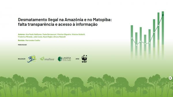 Desmatamento Ilegal na Amazônia: falta transparência nos dados
